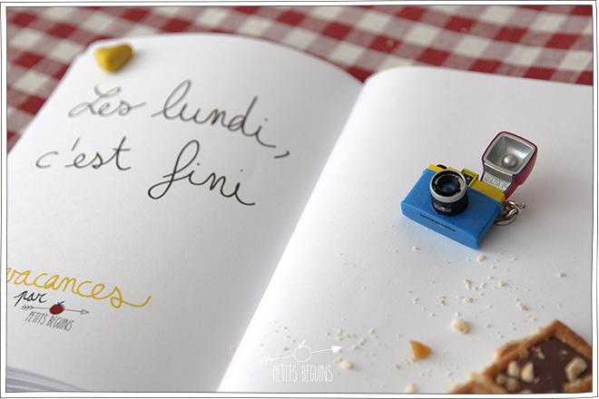 Carnet de Vacances - DIY - Petits Béguins