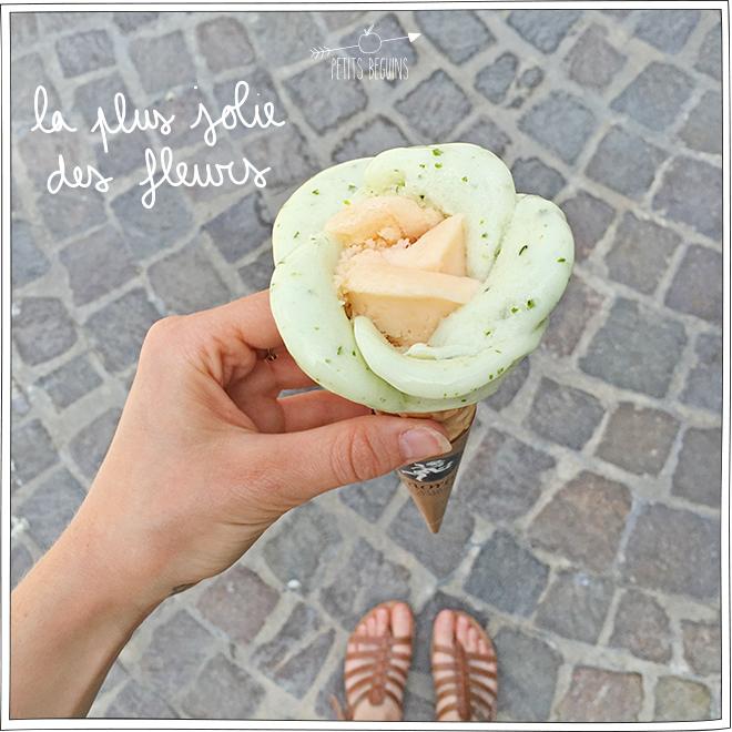 Glaces à Paris - Amorino - Petits Béguins