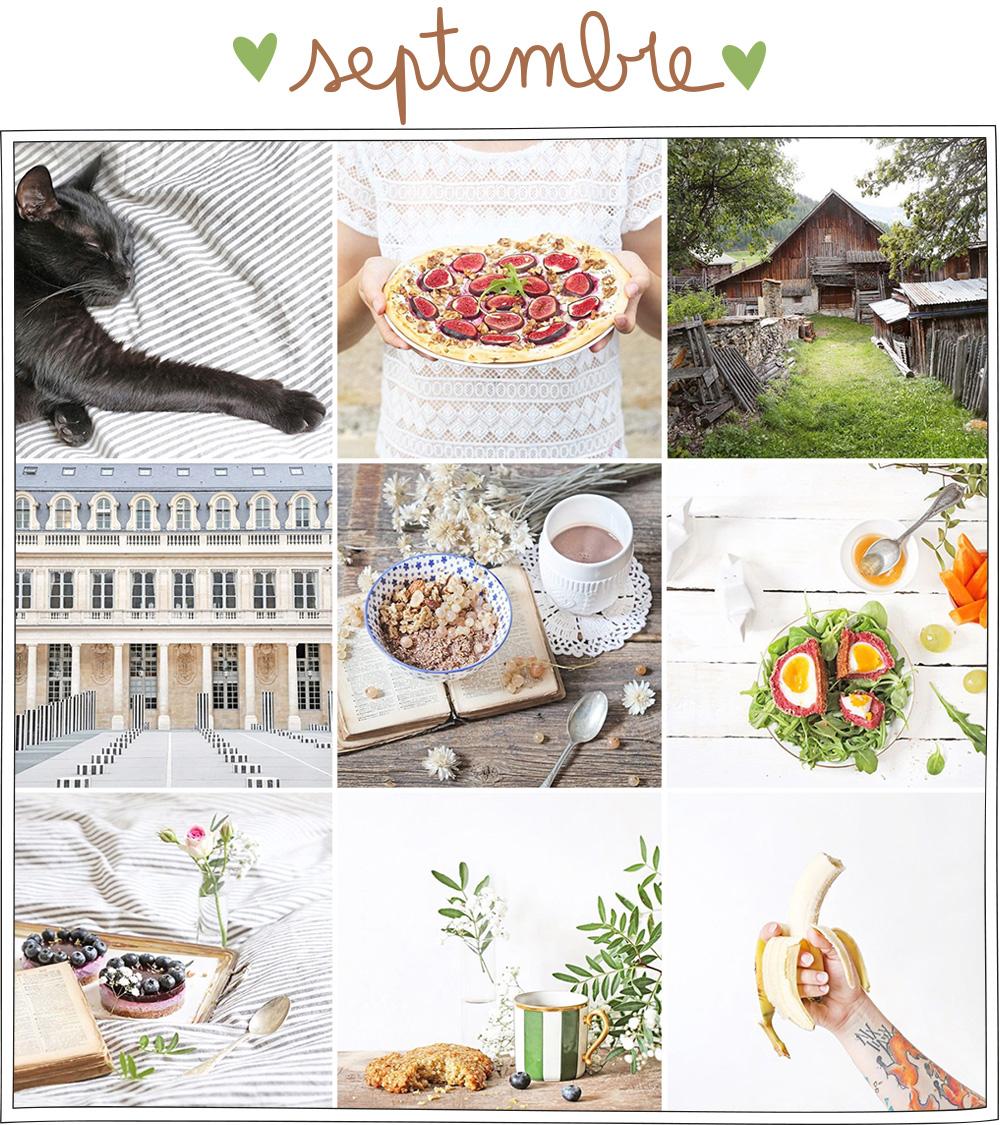 50k sur Instagram par Petits Béguins