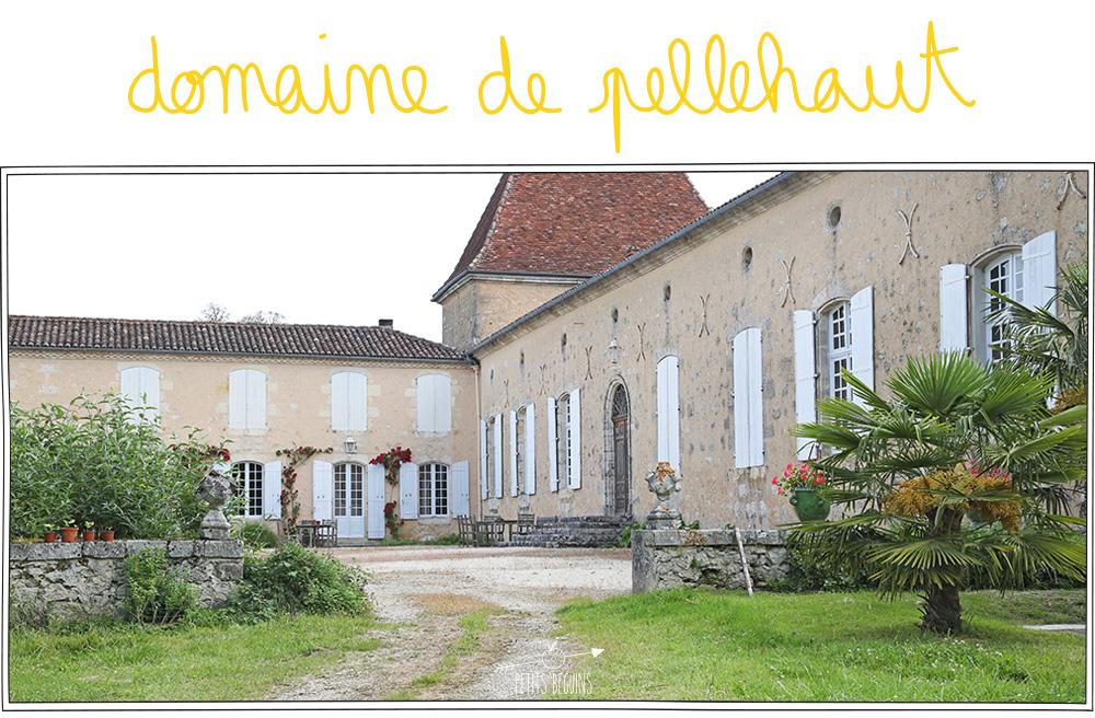 5 recettes d'apéro - Côtes de Gascogne - Petits Béguins